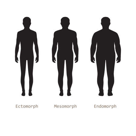 nude male: body male types, silhouette man naked figure, front human body Illustration