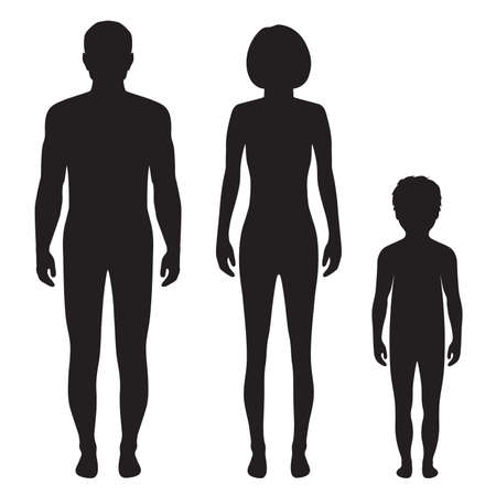 nude man: human body anatomy,front vector man, woman silhouette