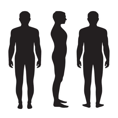 naked: human body anatomy, vector man silhouette, front back side
