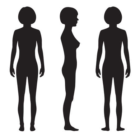 naked female: human body anatomy,front, back side, vector woman silhouette Illustration