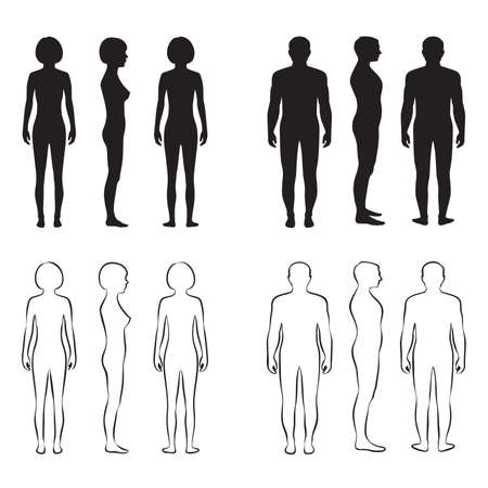 naked woman back: human body anatomy,front vector man, woman silhouette