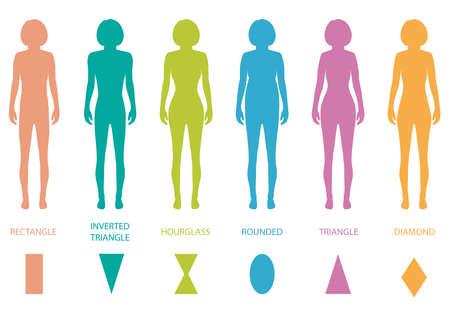 여성의 몸 유형 해부학, 여자 앞 그림의 모양, 벡터 실루엣 일러스트
