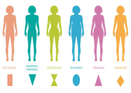 naked female body: female body types anatomy,woman front figure shape, vector silhouette