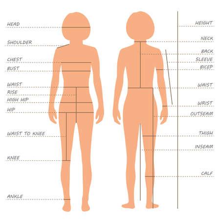 wektor tabelę rozmiarów pomiarów ciała, modelka ubranie, szycie