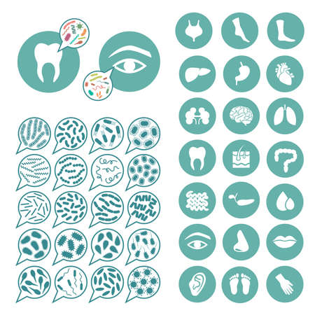 intestino: bacterias, infección por el virus, la enfermedad ilustración