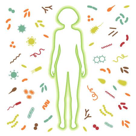 sistemas: la protección del sistema inmune. bacterias, infección por el virus Vectores