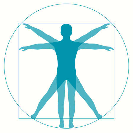 Vetruvian Man Leonardo Da Vinci, human anatomy
