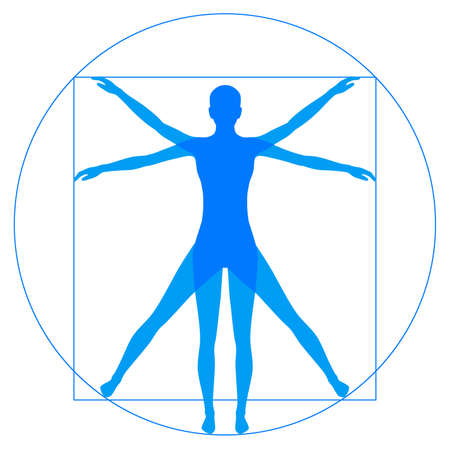 hombre: Leonardo Da Vinci Vetruvian hombre, la anatomía humana