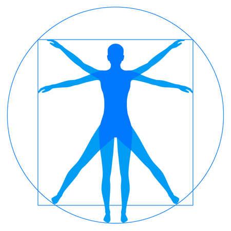 uomo vitruviano: Leonardo Da Vinci Vetruvian uomo, anatomia umana