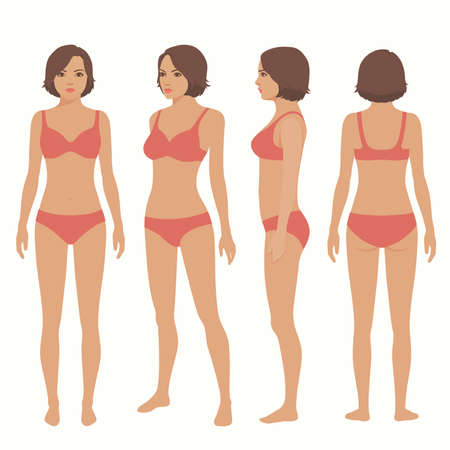 Human body anatomy, front, back, side view vector woman illustration.
