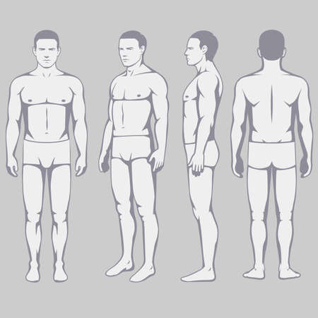 human body anatomy, vector man front back side Vectores