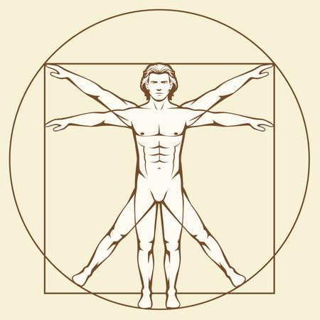 Leonardo Da Vinci Vetruvian Man, anatomía humana Foto de archivo - 90574954