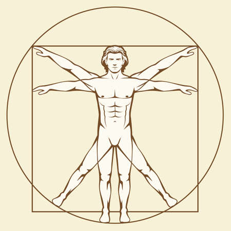 Leonardo Da Vinci Vetruvian Man, Human Anatomy Royalty Free Cliparts ...