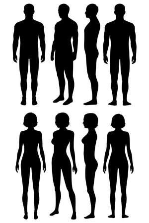menselijk lichaam anatomie, voorkant, achterkant, zijaanzicht, vector vrouw, man illustratie, lichaam silhouet