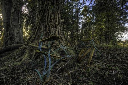 banc de parc: Bris� banc de parc � l'h�pital psychiatrique abandonn�