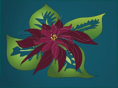 Lotus, water flower. Illustration