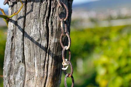 A rusty chain