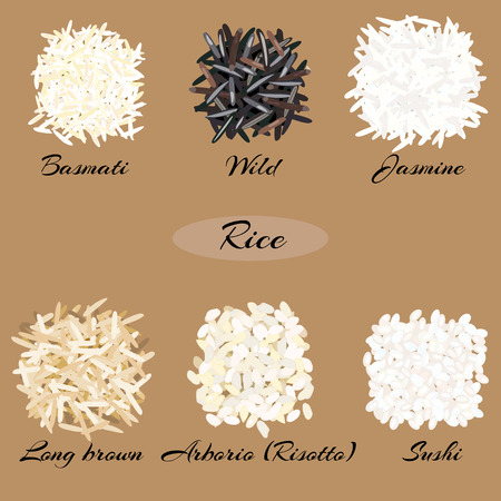 Different types of rice Basmati, wild, jasmine, long brown, arborio, sushi. Vector illustration EPS 10. Vettoriali