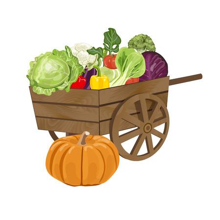 freshly: Illustration of a vintage wooden Cart Filled With Freshly Picked Vegetables. Vector illustration EPS 10.