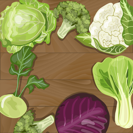 bok choy: Various types of cabbage on wooden background. Green, purple, broccoli,  cauliflower, kohlrabi,  bok choy. Vector illustration EPS 10