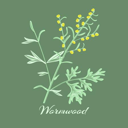 Wormwood herb or Artemisia absinthium. Vector illustration.