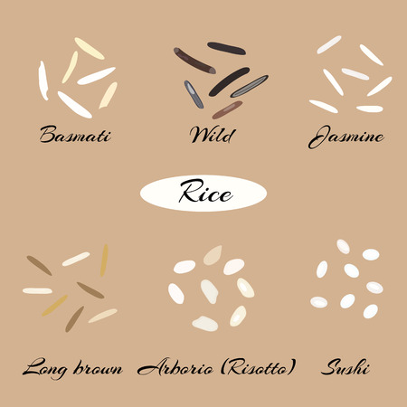 Different types of rice Basmati, wild, jasmine, long brown, arborio, sushi. Macro.
