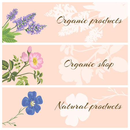 dog rose: Vector set of organic product labels with flowers. Sage, dog rose and flax. Design for cosmetics, store, natural and organic products.
