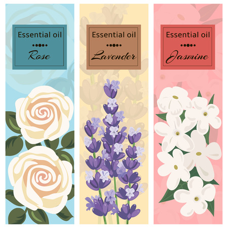 essential oil: Essential oil set collection. Rose, lavender, jasmine banner set.
