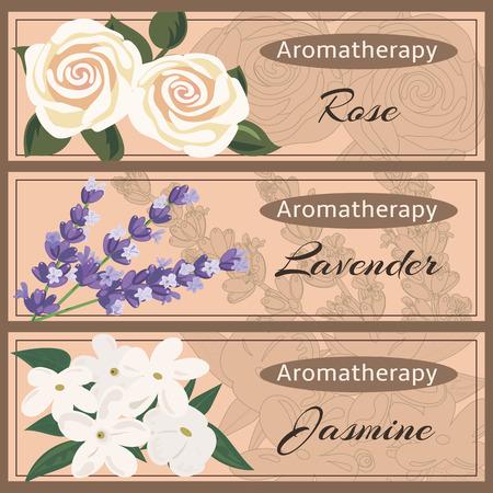 Aromaterapia conjunto de la colección. Rosa, lavanda, jazmín conjunto de la bandera. Ilustración de vector