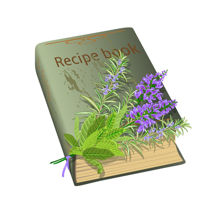 sage: Old recipe book with bunch of flowers. Sage and rosemary. Vector illustration.