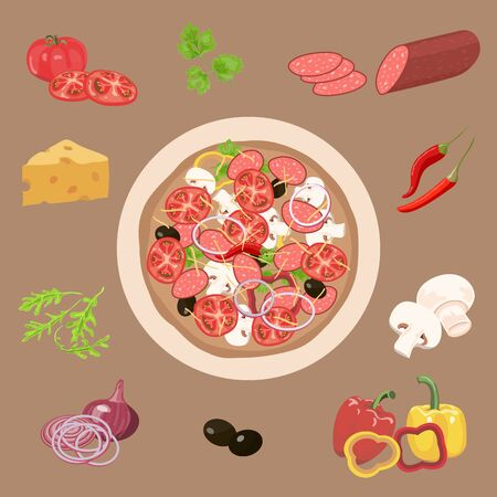 salami: Pizza and ingredients. Vegetables, salami, cheese, herbs. Vector illustration.