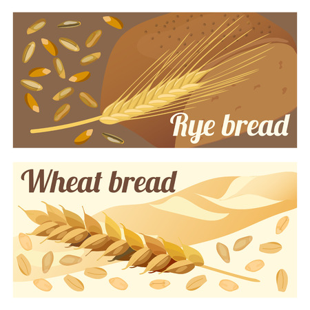 spelt: Set of labels rye and wheat bread. Ears and grains. Vector illustration.
