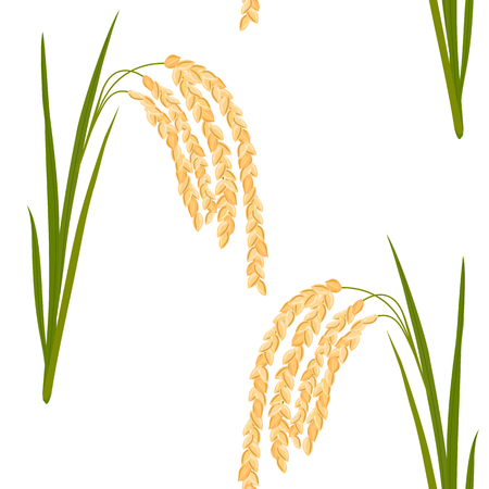 Seamless pattern with rice. Leaves and spikelets of rice on a white background. Vector illustration.