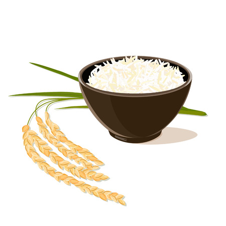Leaves and spikelets of rice and brown bowl full of white long rice on a white background. Vector illustration.