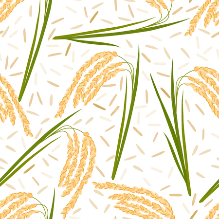jasmine rice: Seamless pattern with rice leaves, spikelets and seeds on a white background. Vector illustration.