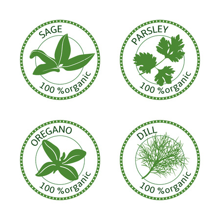 sage: Set of herbs labels. 100 percent organic. Greenery collection. Vector illustration. Parsley, oregano dill sage
