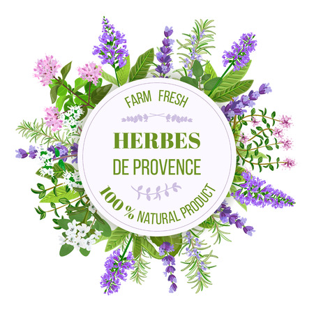 marjoram: Herbes de Provence. Bunch of farm fresh herbs. Design for cosmetics, restaurant, store, market, natural and 100 organic, health care products. Illustration