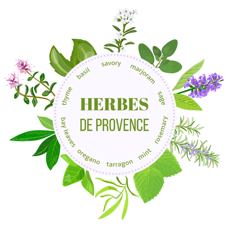 Herbes de Provence traditional spice mix. Round emblem with type design for cosmetics, restaurant, store, market, natural health care products. Can be used as   price tag, label, web