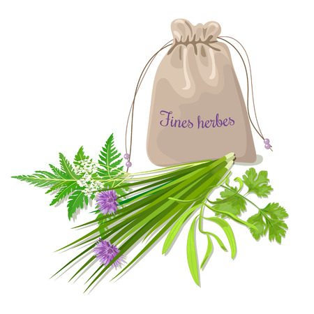 pouch: Fines herbes sachet mix. Swatch pouch with herbs. Design for cosmetics, restaurant, store, market, natural health care products. Can be used as design, price tag, label, web, textile, emblem
