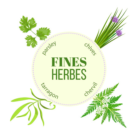 Fines herbes traditional spice mix. Round emblem with type design for cosmetics, restaurant, store, market, natural health care products. Can be used as design, price tag, label, web, textile