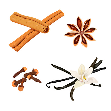 cloves: Set of spices. vanilla flower and pods, cloves, star anise, cinnamon, vector isolated objects on white background. 100 organic. For menu, spa salon, aromatherapy, perfume isolated Illustration
