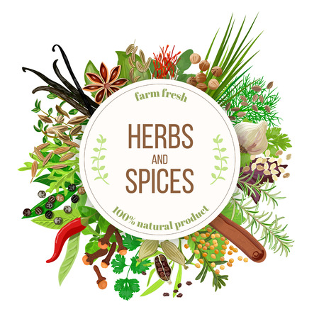 Culinary herbs and spices big set with round emblem. Bunch of cooking seasonings. For cosmetics, restaurant, store, market, natural health care products. Can be used as design, price tag, label