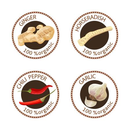 Conjunto de hierbas etiquetas. 100 orgánico. Colección de la especia. Ilustración del vector. Rábano picante, jengibre, ají, ajo. sellos marrones. emblema redondo para los cosméticos, restaurante, servicios de salud, etiqueta de precio