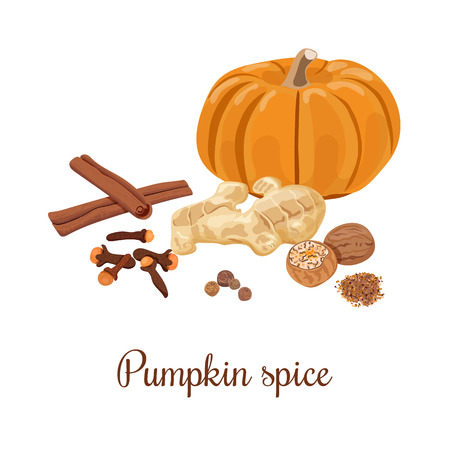 Pumpkin spice. Vector illustration. Nutmeg, ginger, cloves, cinnamon, allspice. Spices set for pumpkin cakes, pie, latte, coffee. For food design, restaurant, cafe. Can be used as tag, label
