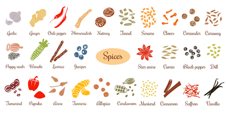 Big vector set of popular culinary spices silhouettes. Ginger, chili pepper, garlic, nutmeg, anise etc. For cosmetics, store, spa, natural health care. Can be used as logo design, price tag, label
