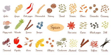 Big wektor zestaw popularnych kulinarnych przypraw sylwetki. Imbir, pieprz chili, czosnek, gałka muszkatołowa, anyż itp. Dla kosmetyków, sklepu, spa, naturalnej opieki zdrowotnej. Może być używany jako projekt logo, cena, etykieta