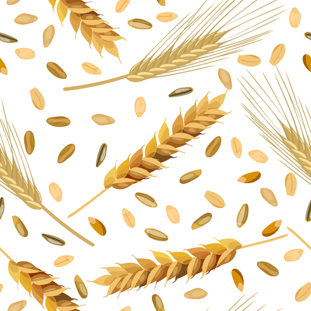 rye: Seamless pattern wheat and rye ears and grains.