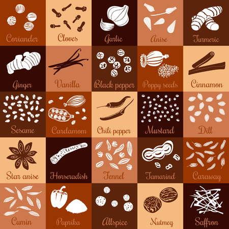 cloves: Spices hand drawn vector squared icon big set with names. Popular cooking spices chili pepper, cinnamon, cloves, cumin, dill, garlic, mustard, paprika, Poppy, star anise, vanilla, black pepper.
