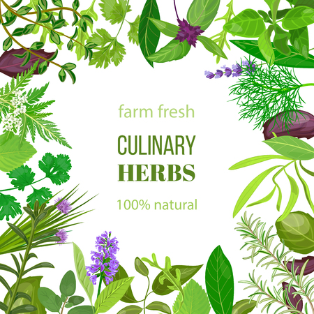 Culinary herbs ornament with text 100% natural.