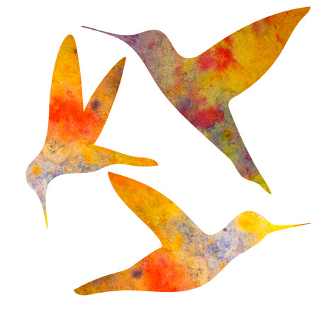 Hummingbirds Silhouette. watercolor illustration. isolated on white background. For postcards, decoration.